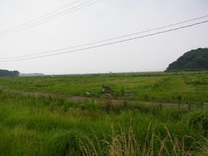 Rimg0030